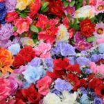 Kwiaty na Twój dobry sen