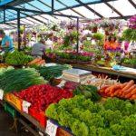 Trend na sklepy internetowe ze zdrową żywnością