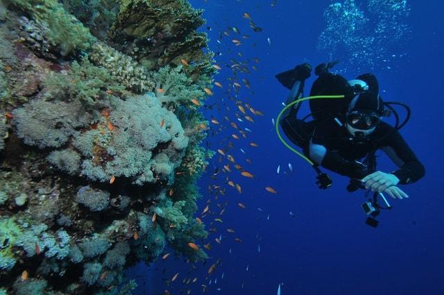 Czy nurkowanie wpływa na zdrowie?